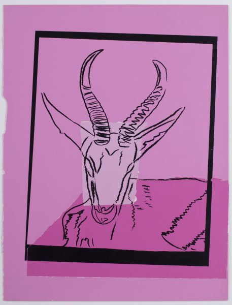 Skizze einer Gazelle vor pinkem Hintergrund, gerahmt durch schwarzes Rechteck