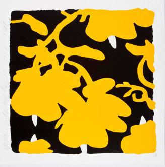 Blumenmuster gelb-weiß auf schwarzem Hintergrund