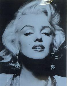 Portraitbild von Marilyn Monroes Gesicht blaugrau auf schwarz
