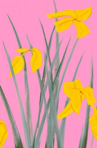 alex_katz_YELLOW_FLAGS_3